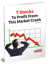 7 Stocks To Profit From This Market Crash